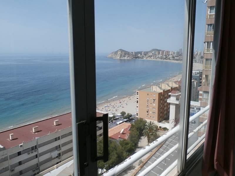Foto - Apartamento en venta en Poniente en Benidorm - 280571136