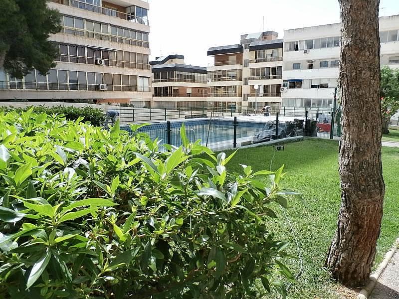 Foto - Apartamento en venta en Poniente en Benidorm - 280571148