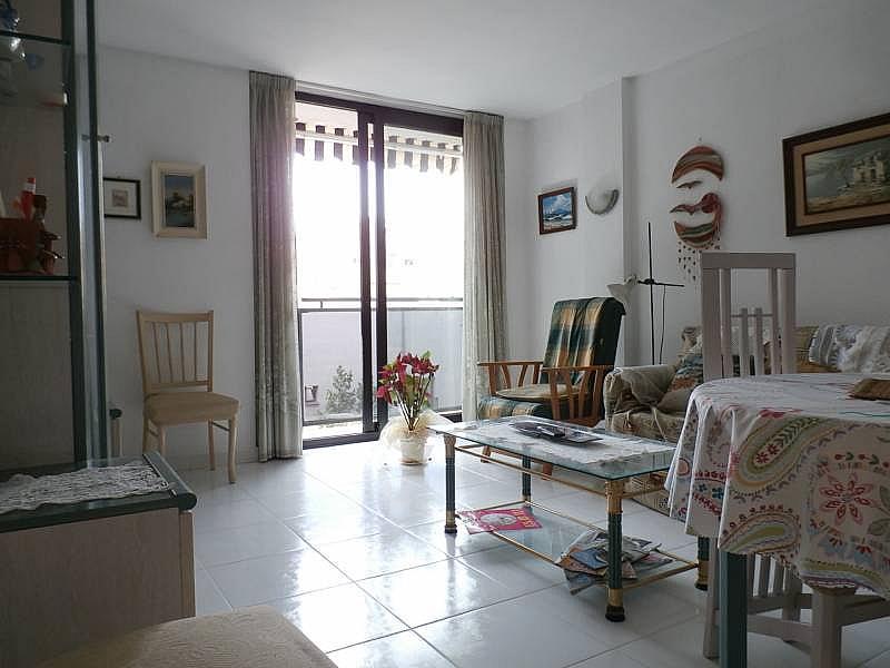 Foto - Apartamento en venta en Zona centro en Benidorm - 292278325