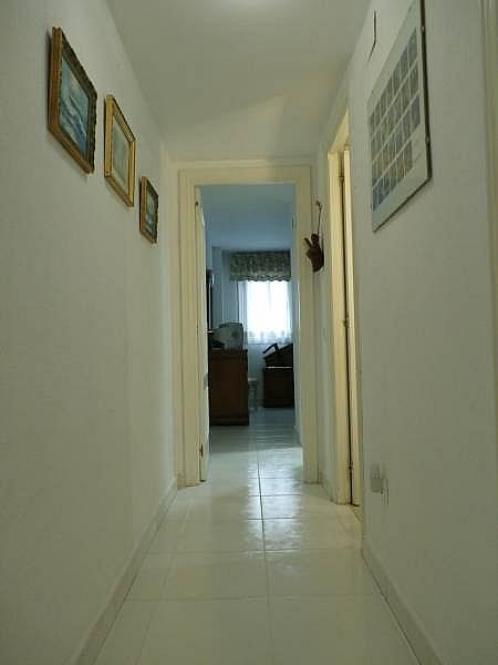 Foto - Apartamento en venta en Zona centro en Benidorm - 292278382