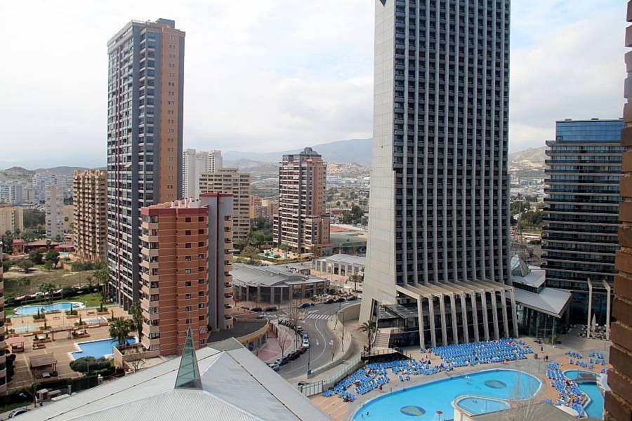 Foto - Apartamento en venta en Poniente en Benidorm - 292278460