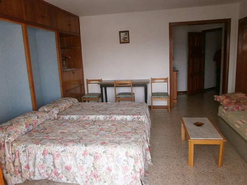 Foto - Estudio en alquiler en Poniente en Benidorm - 331548397