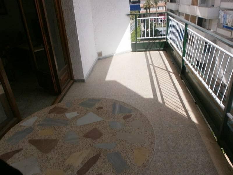 Foto - Estudio en alquiler en Poniente en Benidorm - 331548400