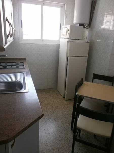 Foto - Estudio en alquiler en Poniente en Benidorm - 331548418