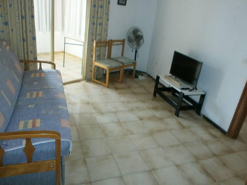 Foto - Apartamento en alquiler en Poniente en Benidorm - 390449423