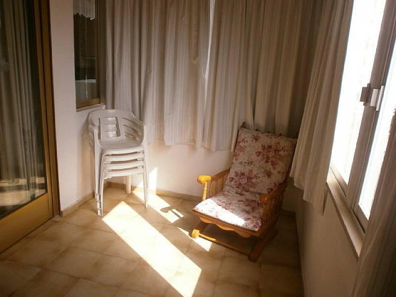 Foto - Apartamento en alquiler en Poniente en Benidorm - 390449435
