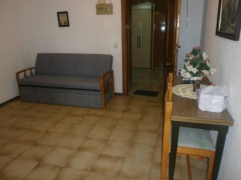 Foto - Apartamento en alquiler en Poniente en Benidorm - 390449441