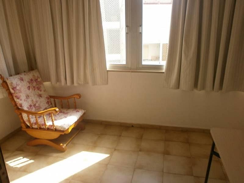 Foto - Apartamento en alquiler en Poniente en Benidorm - 390449462