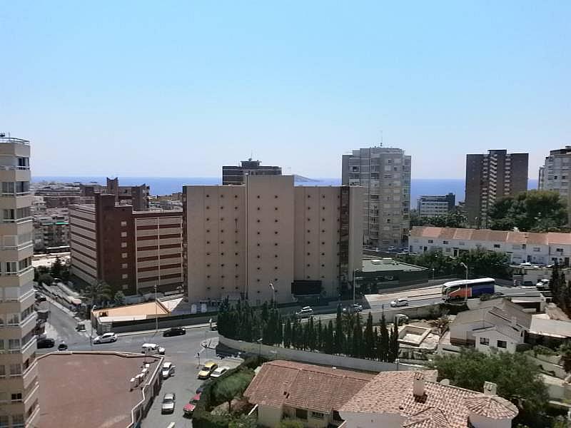 Foto - Apartamento en venta en Poniente en Benidorm - 263835606