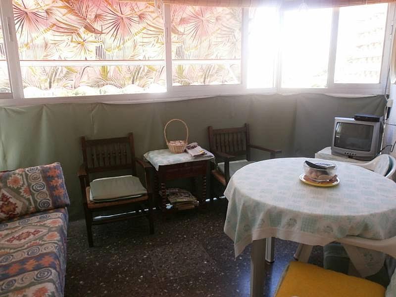 Foto - Apartamento en venta en Poniente en Benidorm - 263835633