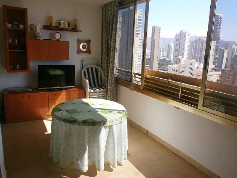 Foto - Apartamento en venta en Levante en Benidorm - 193448376