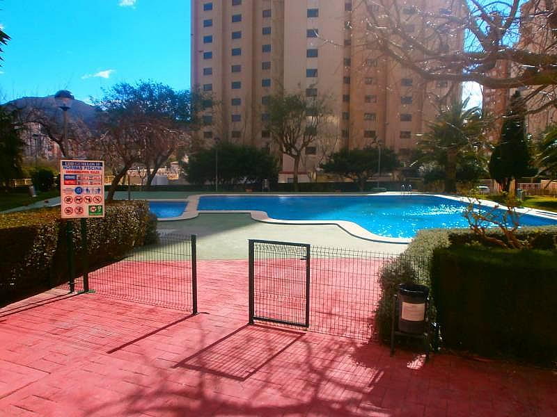 Foto - Apartamento en venta en Levante en Benidorm - 215318369