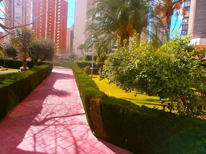 Foto - Apartamento en venta en Levante en Benidorm - 215318390