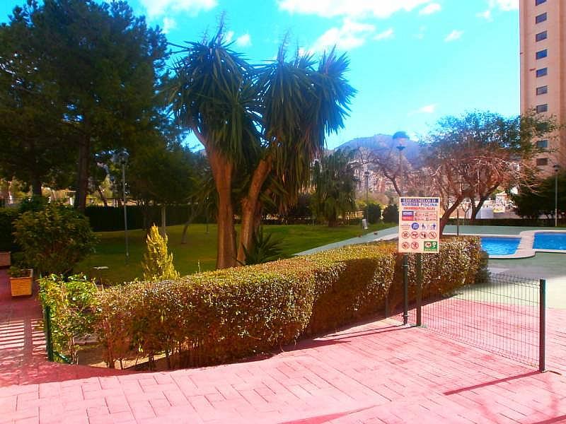Foto - Apartamento en venta en Levante en Benidorm - 215318402