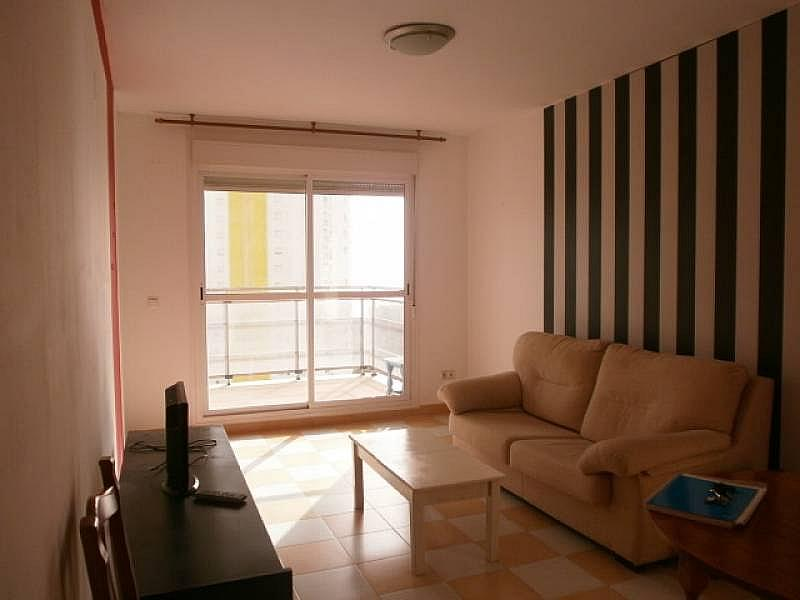 Foto - Apartamento en venta en Poniente en Benidorm - 263835717