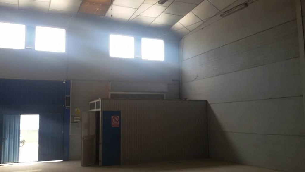 Foto - Nave industrial en alquiler en calle San Jerónimo, San Jerónimo en Sevilla - 213494369