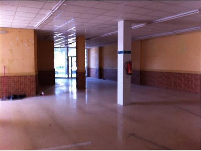 Local comercial en alquiler en Pardinyes en Lleida - 306117875