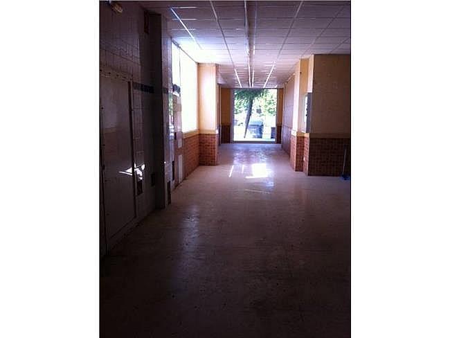 Local comercial en alquiler en Pardinyes en Lleida - 306117881