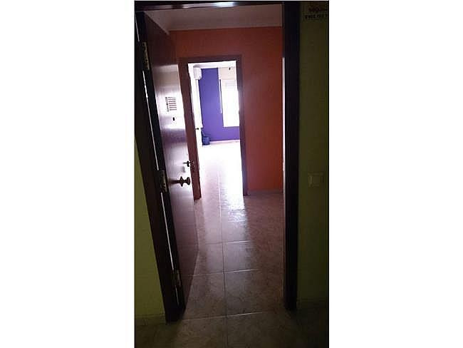 Oficina en alquiler en Pardinyes en Lleida - 307556005
