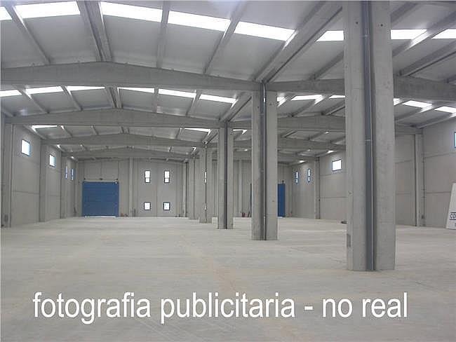 Nave industrial en alquiler en Torre-Serona - 308597404