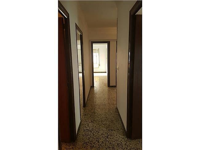 Piso en alquiler en Pardinyes en Lleida - 306125465
