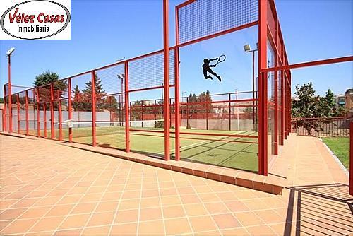 Piso en alquiler en calle Campus de la Salud, Zaidín en Granada - 296599385