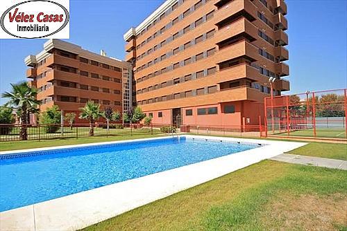 Piso en alquiler en calle Campus de la Salud, Zaidín en Granada - 296599394