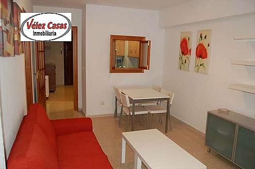 Piso en alquiler en calle Madrid, Beiro en Granada - 316757006