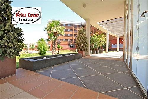 Piso en alquiler en calle Campus de la Salud, Zaidín en Granada - 330778855