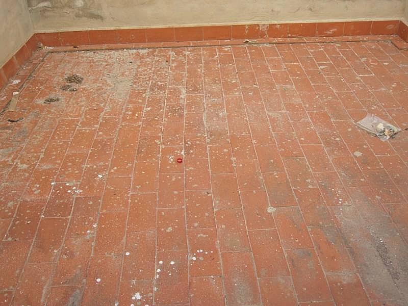 Foto - Local comercial en alquiler en Novelda - 252077626
