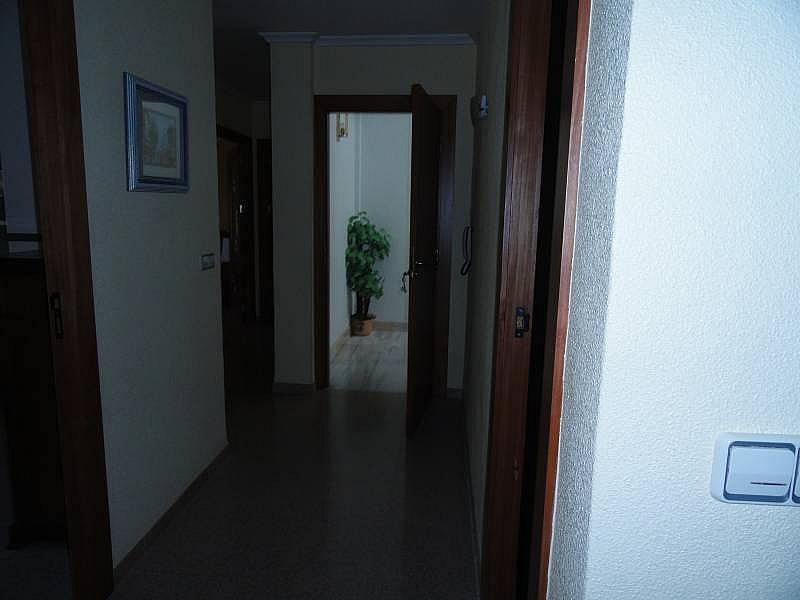 Foto - Piso en alquiler en Novelda - 312694783