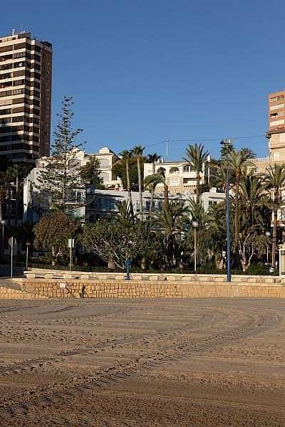 Foto - Apartamento en venta en Poniente en Benidorm - 218082823