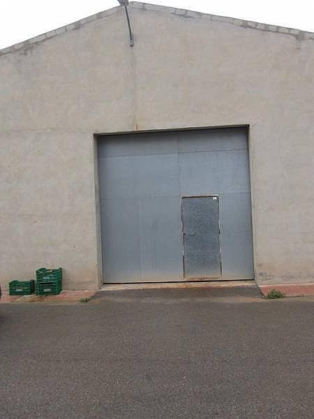 Foto - Nave industrial en alquiler en Novelda - 218104345