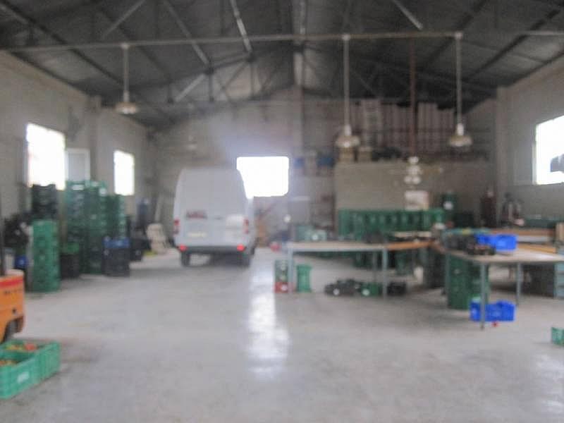 Foto - Nave industrial en alquiler en Novelda - 218104351