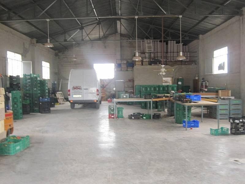 Foto - Nave industrial en alquiler en Novelda - 218104354
