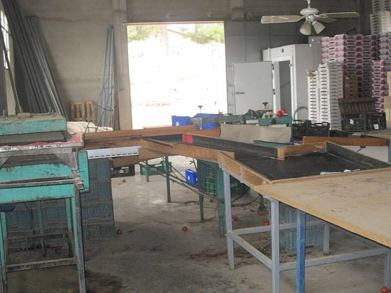 Foto - Nave industrial en alquiler en Novelda - 218104363