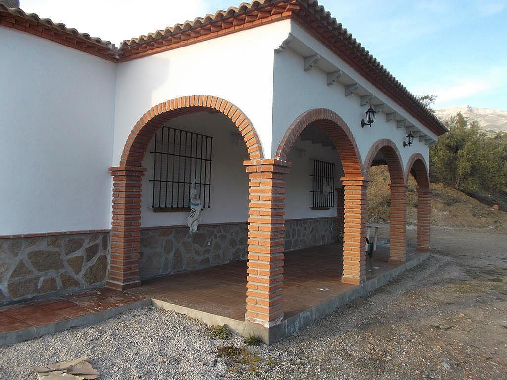 Terraza - Cortijo en alquiler en carretera De la Parra, Sedella - 245915736