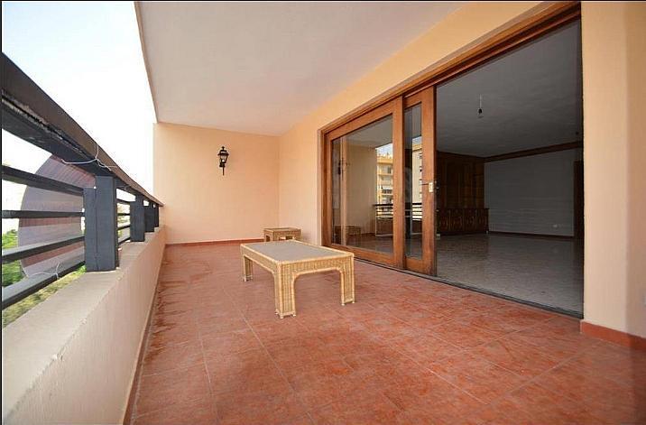 Piso en alquiler en calle Ricardo Soriano, Marbella Centro en Marbella - 317609382