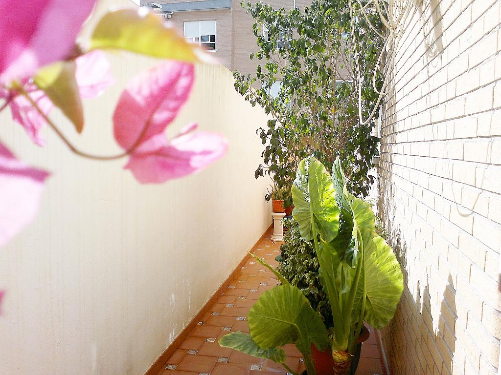 Bungalow en alquiler en calle Prolongación Ronda Santo Domin, Orihuela - 307040648