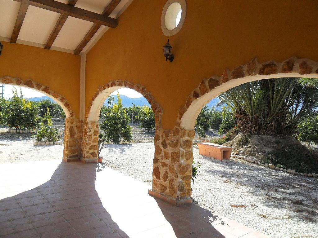 Chalet en alquiler en calle Camino de Abanilla, Benferri - 137796592