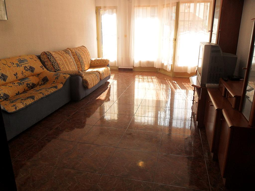 Piso en alquiler en calle Luis Barcala, Orihuela - 149964634