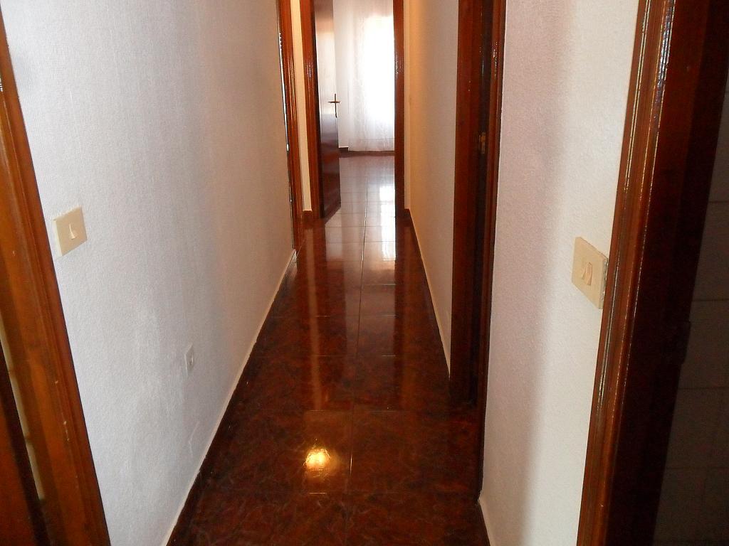 Piso en alquiler en calle Luis Barcala, Orihuela - 149964664