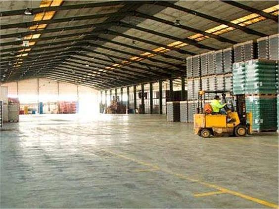 Nave industrial en alquiler en Butarque en Madrid - 258229469