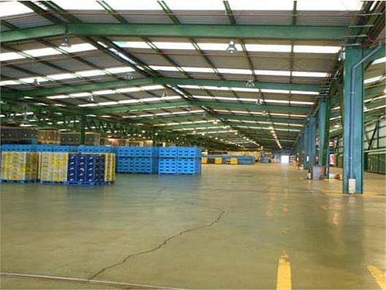 Nave industrial en alquiler en Butarque en Madrid - 258229484