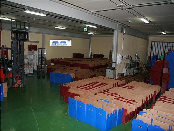 Terreno industrial en alquiler en Casar (El) - 128282072