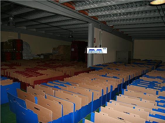 Terreno industrial en alquiler en Casar (El) - 128282073