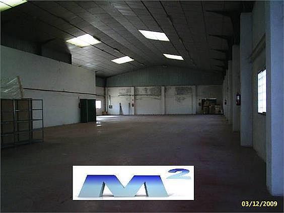 Nave industrial en alquiler en Fuente el Saz de Jarama - 128282754