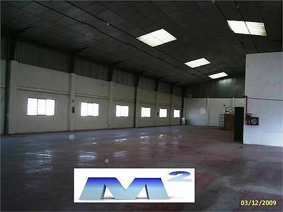 Nave industrial en alquiler en Fuente el Saz de Jarama - 128282755
