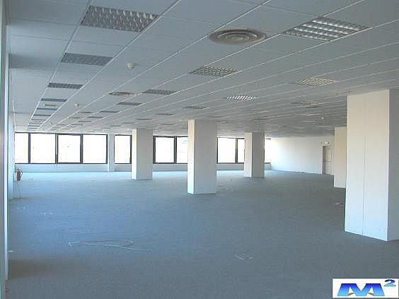 Interior Oficina - Oficina en alquiler en Barajas en Madrid - 141324642