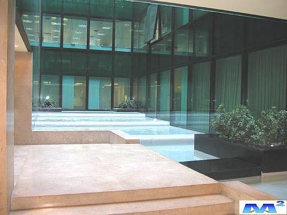 Hall de entrada - Oficina en alquiler en Barajas en Madrid - 141324645